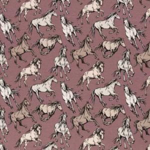 Swafing, Pferde, Jersey Jesse